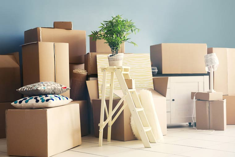 Removals & Relocations